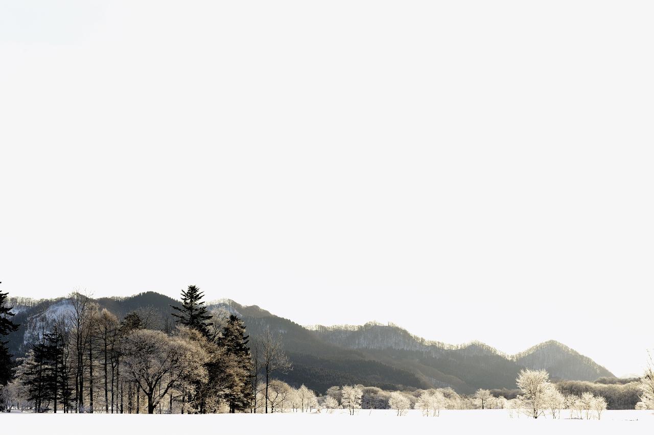 樹氷遠望_e0171886_21222565.jpg