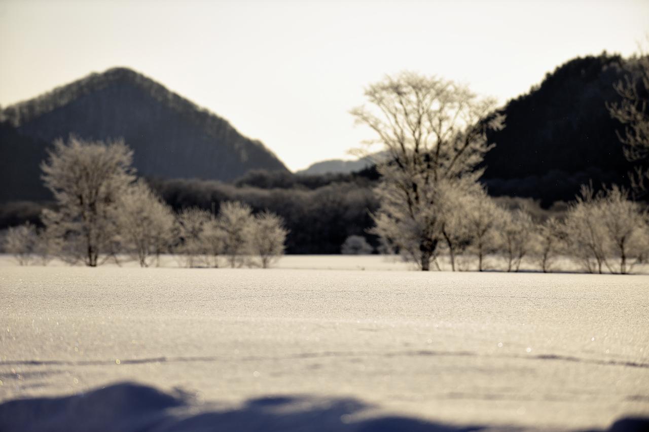 樹氷遠望_e0171886_2128182.jpg