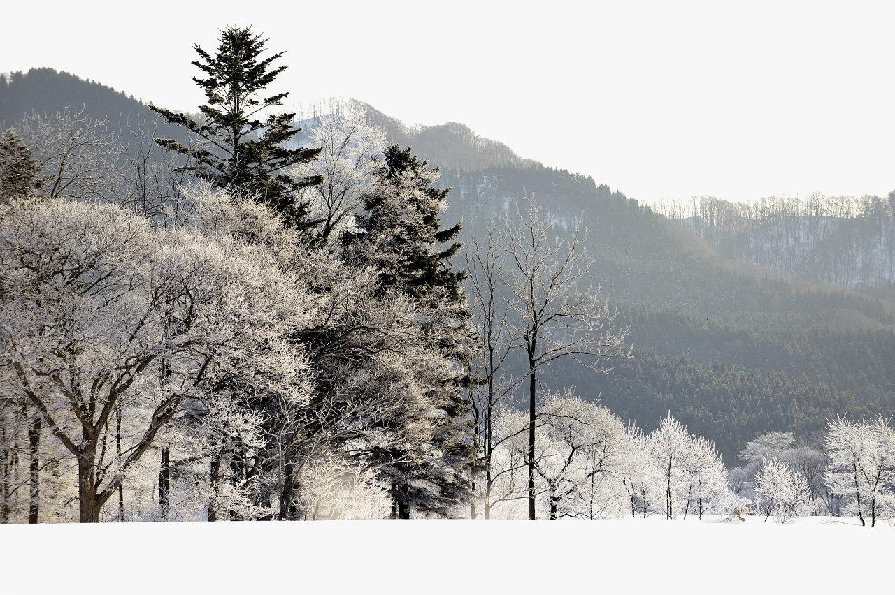 樹氷遠望_e0171886_2128497.jpg