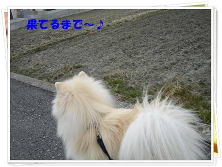 b0167519_9104887.jpg