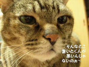 f0131263_172150.jpg