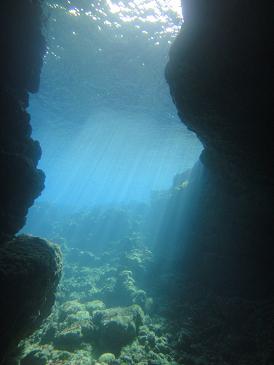 沖縄青の洞窟 体験ダイビング_a0156273_14354226.jpg