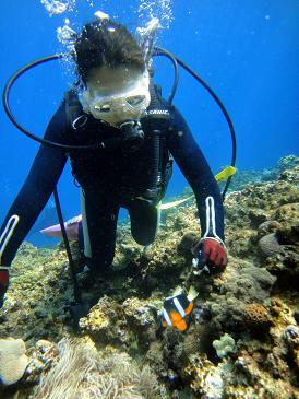 沖縄青の洞窟 体験ダイビング_a0156273_14362494.jpg