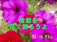 d0095910_7163197.jpg