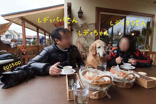 サンポタランチ♪_c0216518_137299.jpg