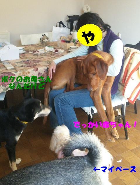 b0207320_22193643.jpg