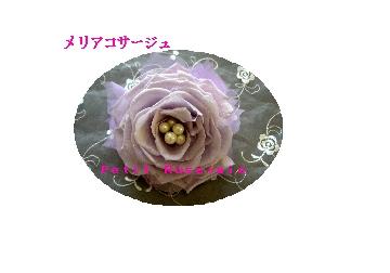 d0151229_1175032.jpg