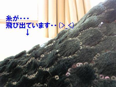b0206444_2251452.jpg