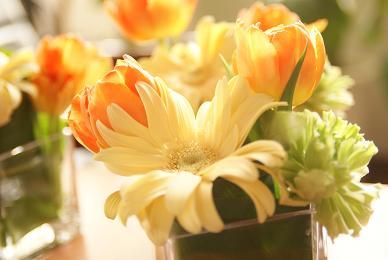 flower_f0202682_2033180.jpg