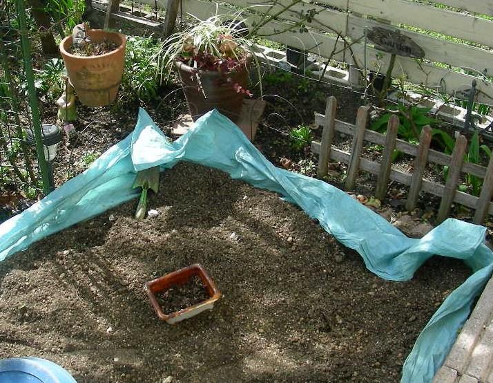土ふるいや庭の整理・・・_b0096584_21564883.jpg