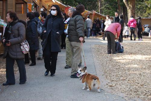 梅香り 犬も笑顔の 花の山_f0101201_21574336.jpg