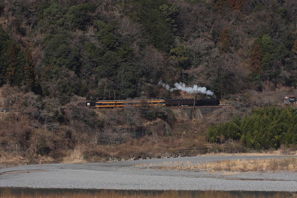 川と山に挟まれた駅 - 2011早春・大井川 -_b0190710_1315147.jpg