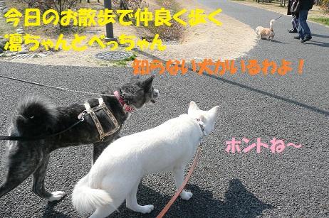 f0121712_224847100.jpg