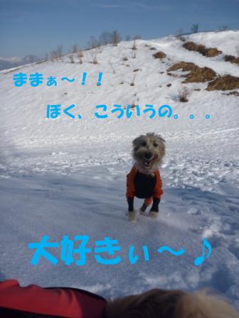 f0176830_2010238.jpg