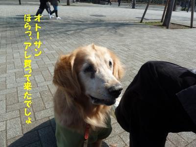 f0118135_21312887.jpg