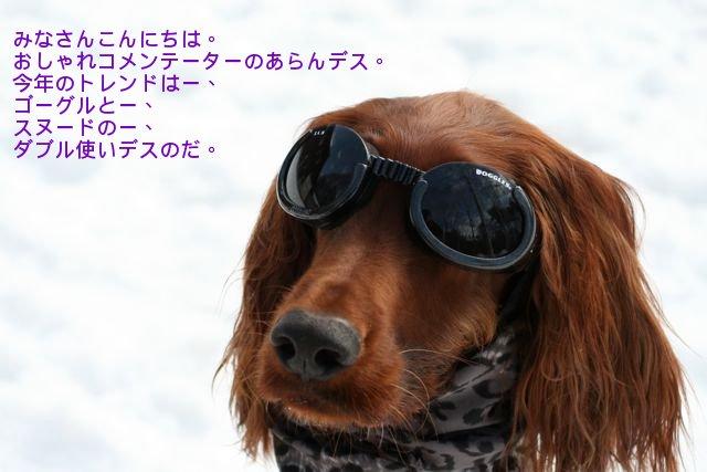 f0039538_2012791.jpg