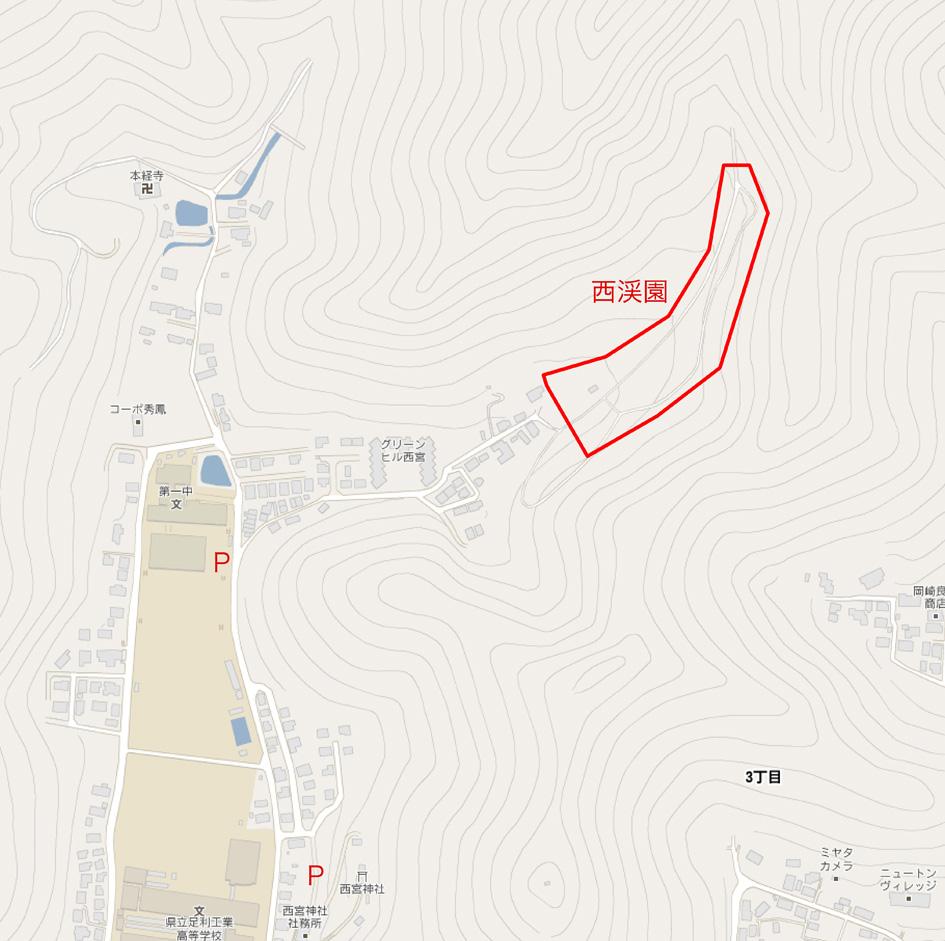 足利 西渓園 梅 織姫山〜両崖山 栃木_e0127948_14555859.jpg