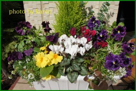 春を感じて_e0236480_13374219.jpg