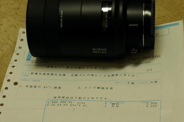 500mmレフレックスレンズ、戻ってきました♪_f0189086_20403736.jpg