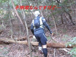 b0050787_1046761.jpg