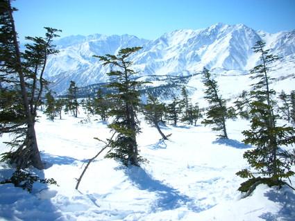 初BCスキー 裏ひよ・裏コルチナ_e0231387_2348577.jpg