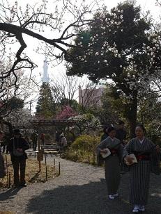 春を探して植物園に、百花園に!! その2 向島百花園_b0175688_1646452.jpg