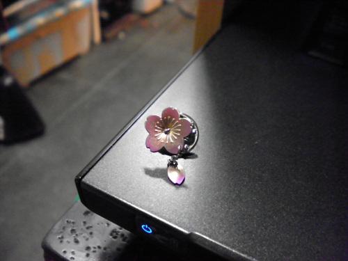 桜色_d0166598_13172266.jpg