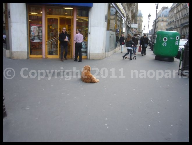 【PARIS】街角のワンコ2月22日(オペラ界隈)_a0008105_17223779.jpg