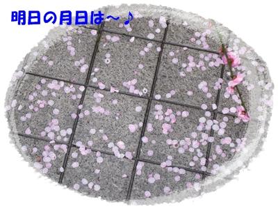 b0167519_924926.jpg