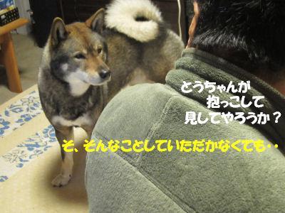 f0143123_2026481.jpg