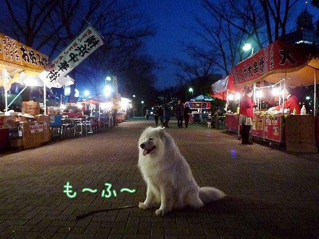 友達いな~いおっきな公園_c0062832_19575977.jpg