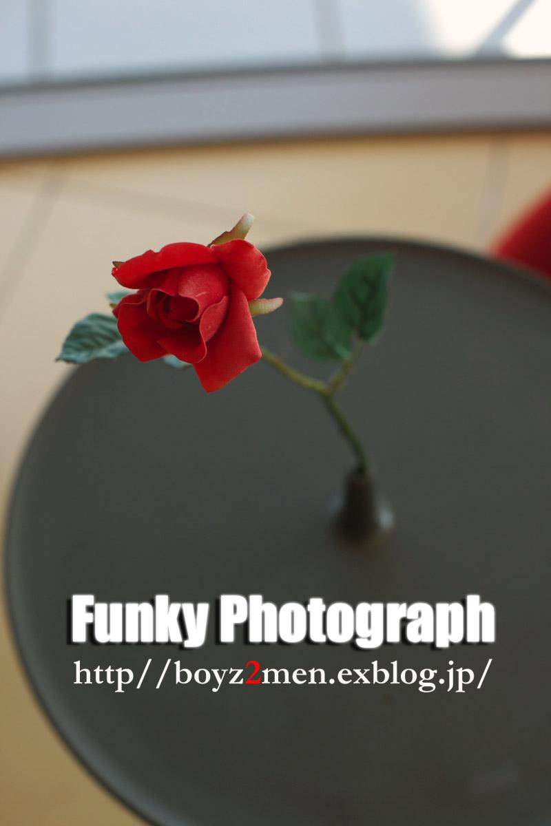 f0031038_22283452.jpg