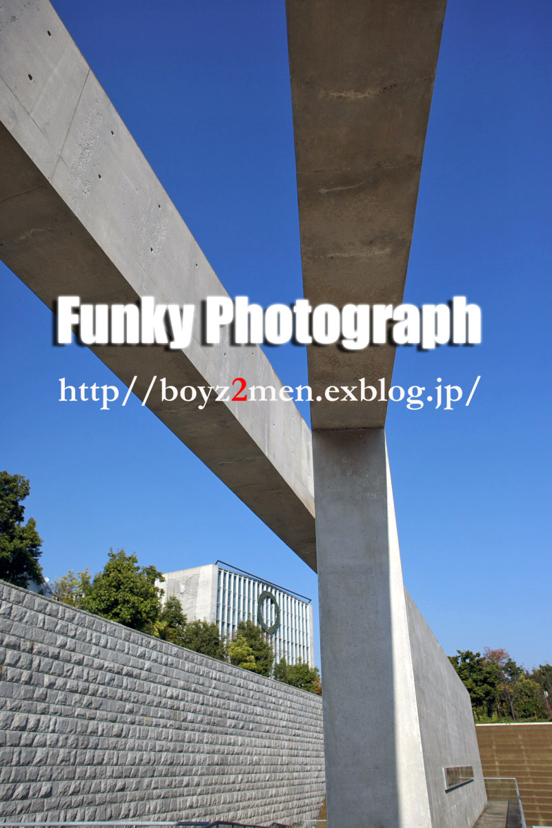 f0031038_22345516.jpg