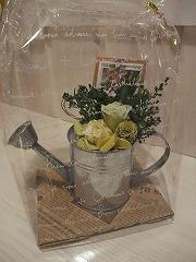男性にもお花を贈りましょう~。_f0201565_16351038.jpg