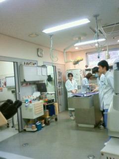 今日の動物病院_d0129766_8413359.jpg
