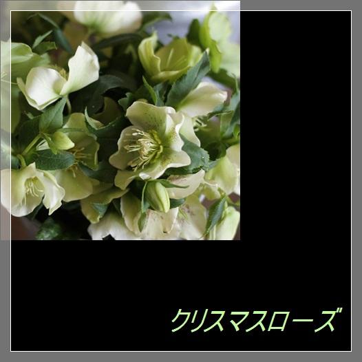 c0167576_784199.jpg