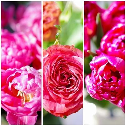森の工房 hana花*marche!! 春が来た!!_c0207890_26621.jpg