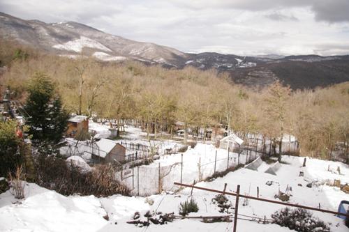 山の家は雪です_f0106597_17401798.jpg