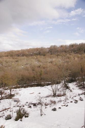山の家は雪です_f0106597_17404575.jpg