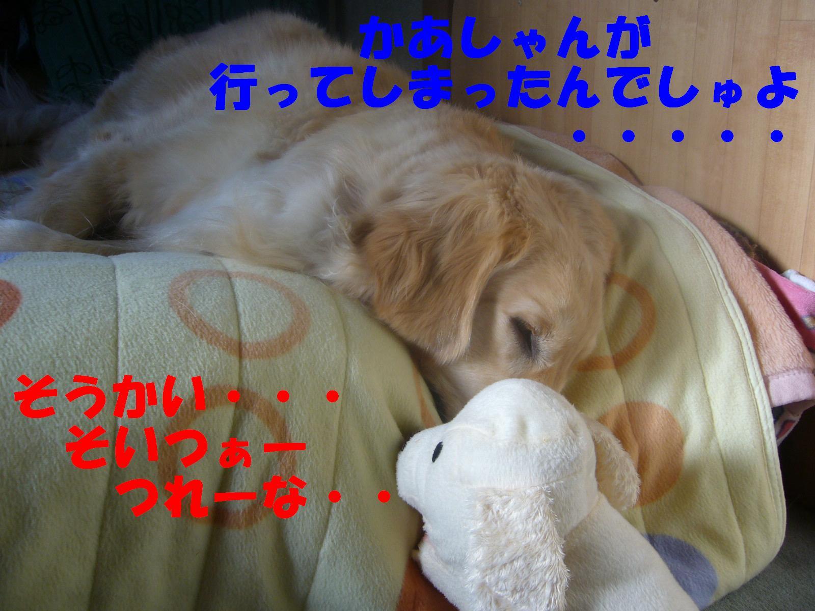 b0206300_1343575.jpg