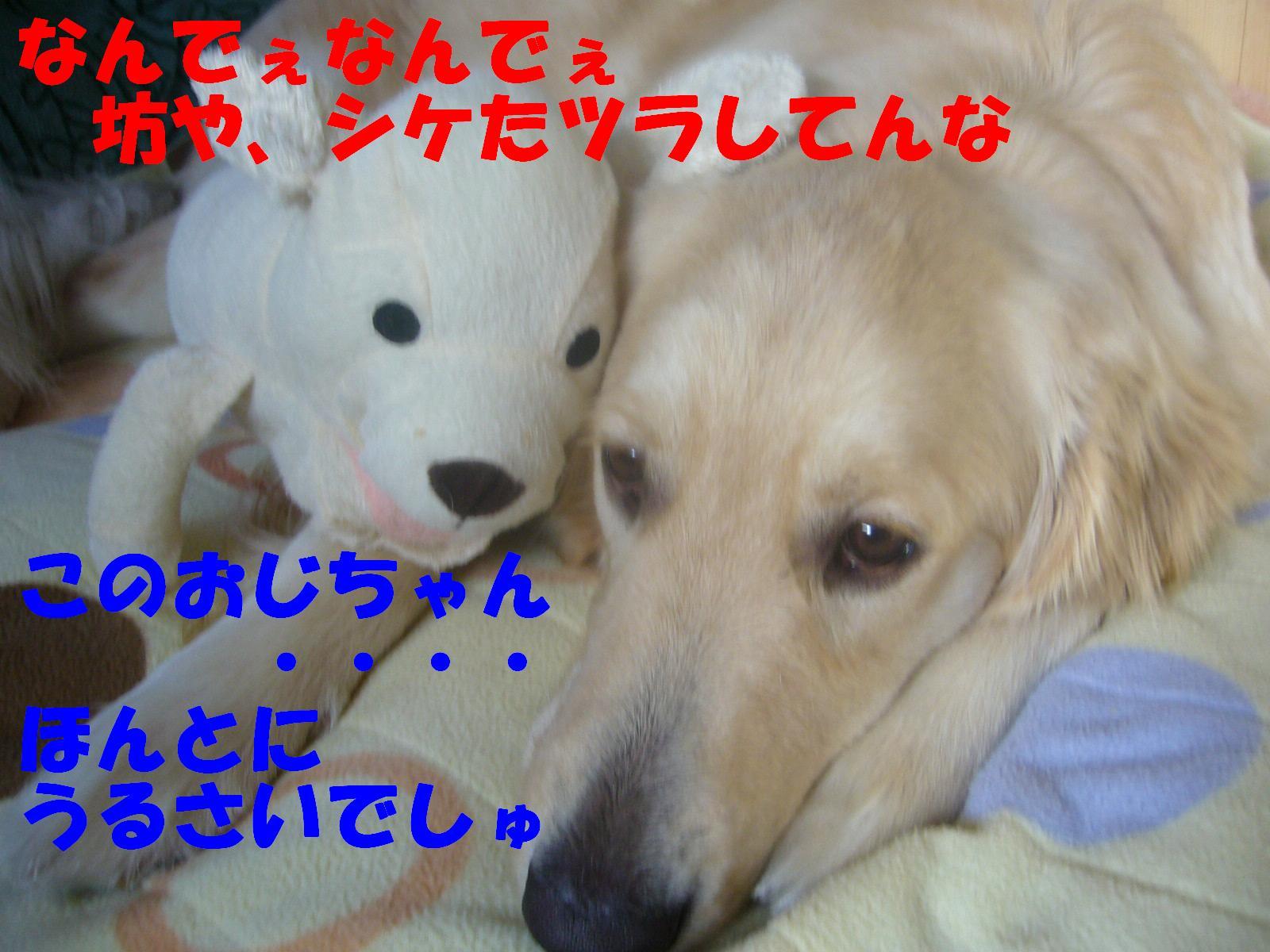 b0206300_1354530.jpg