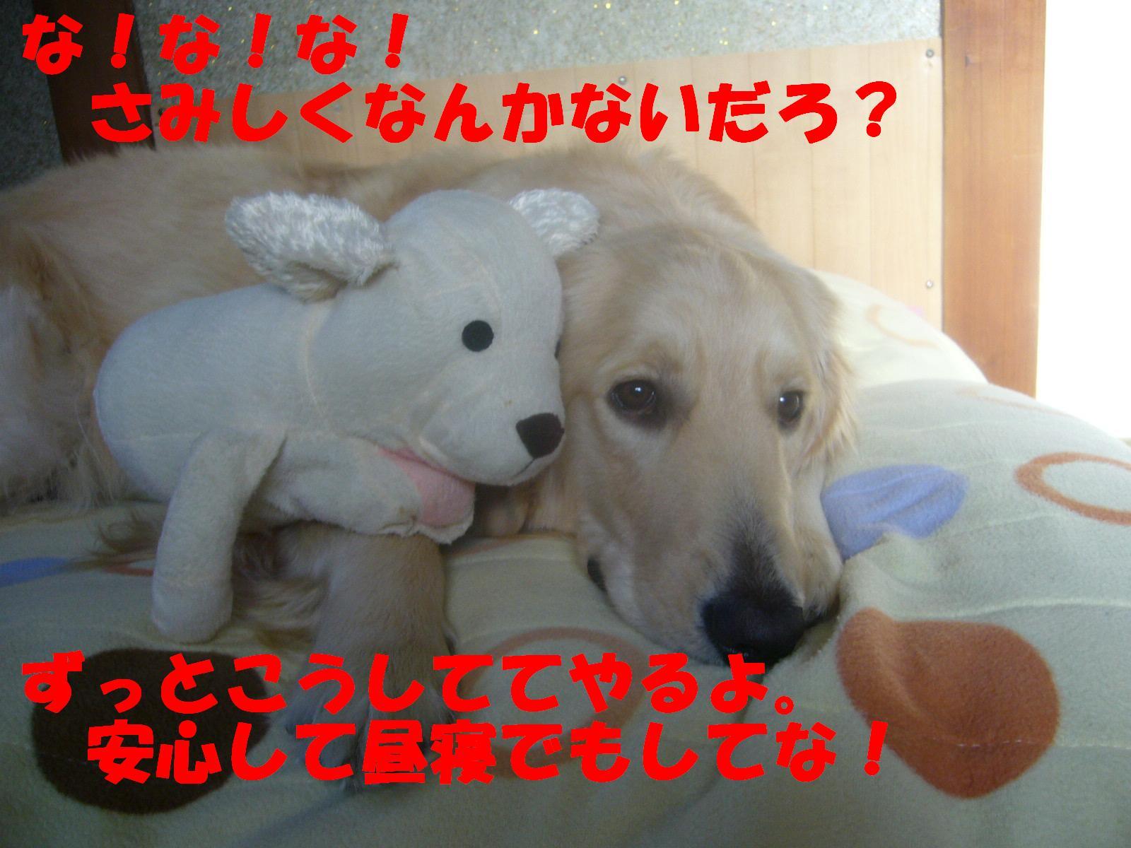b0206300_136851.jpg