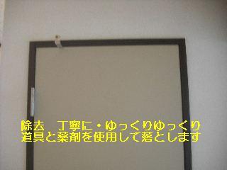 ハウスクリーニング_f0031037_20544429.jpg