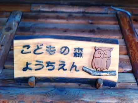 長野の森の幼稚園「こどもの森幼稚園」を訪れて_f0037258_13491735.jpg