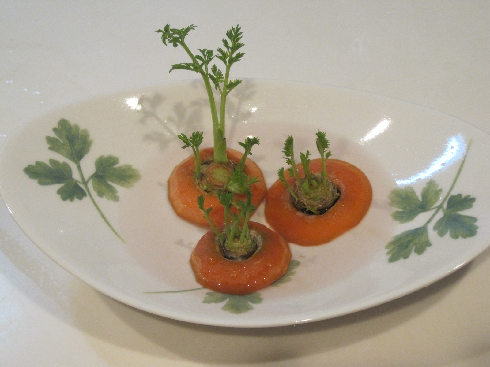 野菜クズで、ECO菜園?_f0236260_15543949.jpg