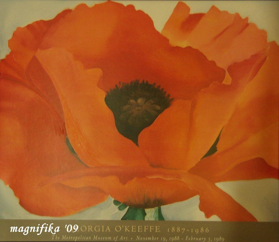 my gallery 23: オキーフの赤色のポピー  O\'Keeffe\'s Red Poppy ©_e0140365_2011591.jpg
