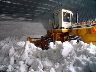 雪入れ再開_d0122374_12405351.jpg