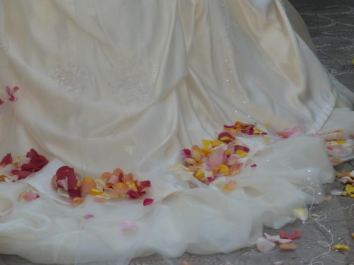姉の結婚式_b0206085_13304873.jpg