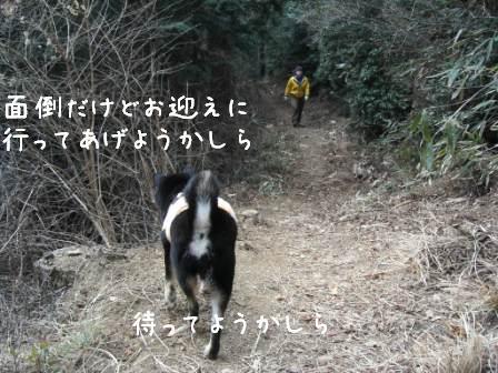 梅とあんひま_f0068501_0215490.jpg