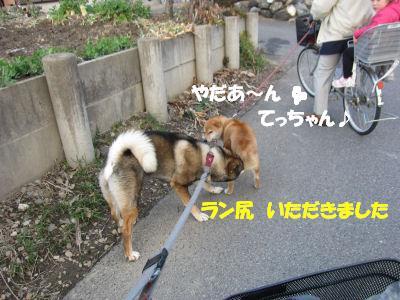f0143123_1952467.jpg